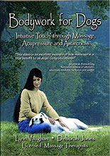 Bodywork for Dogs: Intuitive Touch through Massage, Acupressure and Awareness by Lynn Vaughan