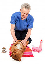 Canine Massage Techniques - Carol Boerio-Croft by Barkleigh