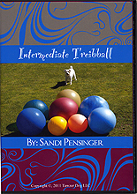 Intermediate Treiball by Sandi Pensinger