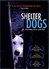 Shelter Dogs: A Documentary Film by Cynthia Wade by MOVIES