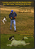 Training Any Breed of Dog  With the Soft Collar by Bill Hillmann