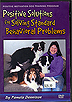 Positive Solutions for Solving Standard Behavioral Problems by Pam Dennison